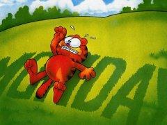 加菲猫的人生歪理,看完整个人都