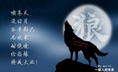 《狼图腾》狼的50条格言